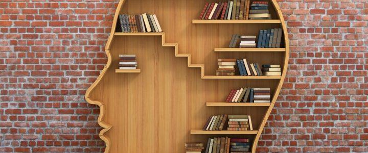 Karagümrük Orta Okul'u Kütüphane Yapımı Projesi