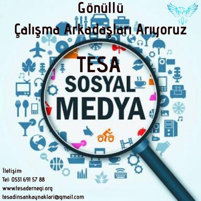 tesa sosyal medya