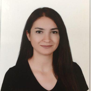 Naşide Ayşina Arslan