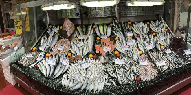 Balık sezonu