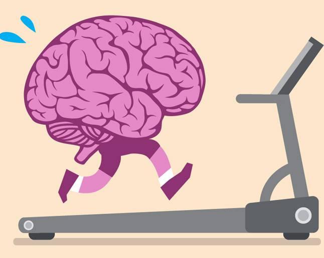 Beyin Antremanı - Nöroplastisite