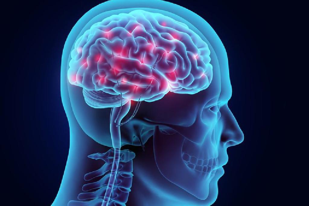 Sinir Yaralanması ve Beyin Hasarı