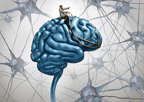 Bilinçte Anlam ve Beyin